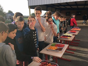 Dégustation de légumes au Collège Saint Martin